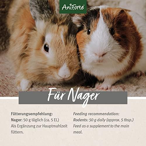 AniForte Natur Nagerfutter 10 Liter für Hamster, Meerschweinchen, Kaninchen – Qualitäts-ID: OLP C 09 - 2