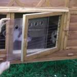 Plexiglas-Scheiben des Kaninchenstalls