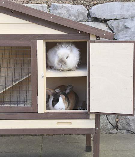 Ruheraum des Kaninchenstalls
